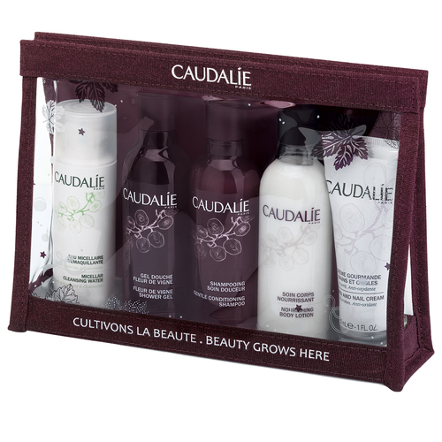 Caudalie BEAUTY TO GO Набор BEAUTY TO GO Набор рюкзак babiators rocket pack 1 5 4 года 30х20х14 цвет камуфляж galactic gray camo bab 072